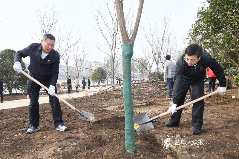 造林绿化展现新气象 加快建设生态新盐城  戴源参加义务植树