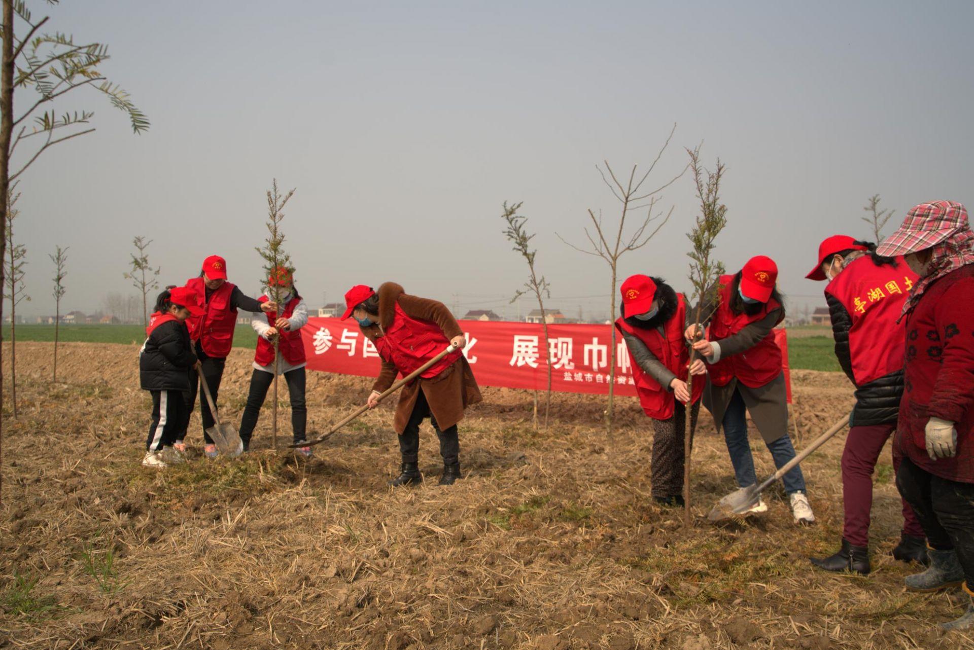 亭湖自然资源和规划分局:开展义务植树活动