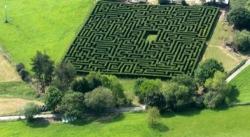 松林迷阵:农民用4000棵松树建西班牙最大迷宫