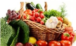 吃有机菜更健康添新证