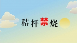 """时时彩开户秸秆禁烧全省唯一连续七个季度实现考核""""零火点""""城市"""