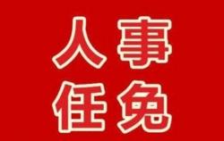 中共鹽城市國家稅務局黨組關于陶青同志任職的通知