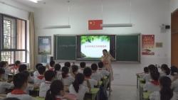 张老师的一天