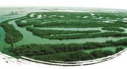 美麗答卷寫在藍天碧水上 —— 鹽都區全面提升生態文明水平紀事
