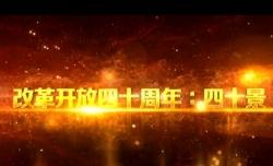 视频丨梦幻迷宫—改革开放40年40景