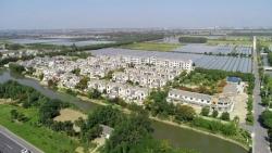 大丰区白驹镇强势推进绿色镇村建设