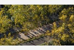 全市掀起春季绿化高潮 共新建成片造林4.09万亩