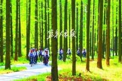 东台市新街镇 获评省特色景观旅游名镇