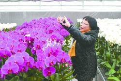 中国晚报摄影学会摄影家来盐拍摄采访 聚焦生态盐城 点赞绿色发展