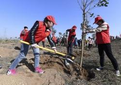 建湖高新区 植树造林推进绿色扶贫