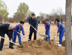 习近平:推动国土绿化不断取得实实在在的成效