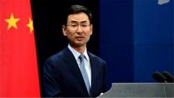 西方国家领导人未出席影响一带一路论坛举办?外交部:别想当然