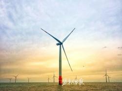 【新时代 新作为 新篇章】江苏盐城:加快绿色转型推进高质量发展