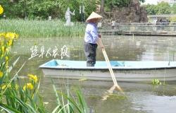 河塘保洁推向纵深 水清岸绿景美宜居