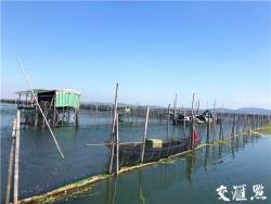 太湖4.5萬畝圍網清拆,通過驗收了!