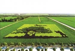 東臺獲準創建國家現代農業產業園 系全市首家入圍單位