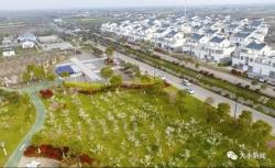 改善农村环境 打造幸福家园 大丰扎实推进农村人居环境整治