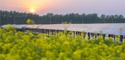 上半年江苏农业农村经济平稳向好,乡村振兴向更高目标迈进