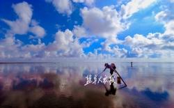 H5|盐城黄海湿地申遗成功!你知道它究竟有多美吗?