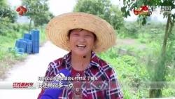 【壮丽70年 奋斗新时代】播种澎湃动能 江苏农业高质量发展势头强劲