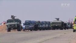 埃及安全部队打死11名恐怖分子