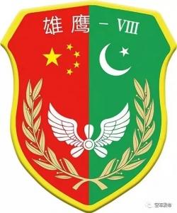 中巴空軍在中國境內舉行第8次聯合訓練,不針對第三方