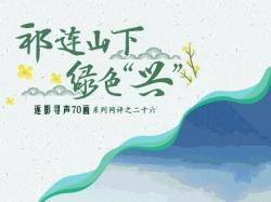 """【逐影寻声70画】祁连山下绿色""""兴"""""""