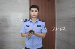 民警救助一只受傷雀鷹  系國家二級保護動物
