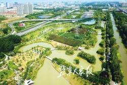 城市綠肺—— 大馬溝生態公園