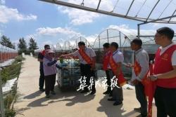 農業科技這樣助力鄉村振興!勞模愛心團隊發揮示范帶動作用