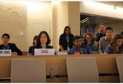 香港各界对何超琼在联合国人权会议的发言予以积极评价