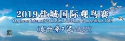 2019盐城国际观鸟节(东台条子泥)开幕式