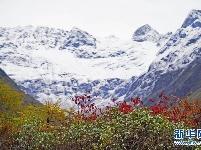 西藏派墨農村公路秋色如畫
