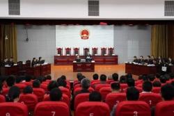 """1700余万人围观!江苏这个法庭成立后为长江鳗鱼苗敲响""""第一槌"""""""