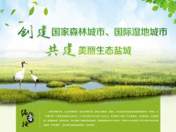 创建国家森林城市、国际湿地城市 共建美丽生态best365