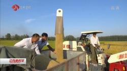 第39个世界粮食日 江苏聚力建设粮食产业强省