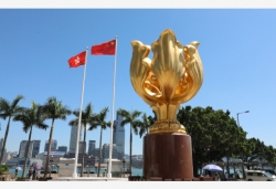 香港选管会声明:停止暴力 和平有序选举