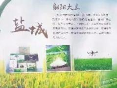 """射陽大米糧食物流產業園區摘得""""省牌"""""""