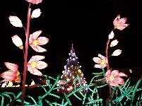 第二屆紐約花燈游園會開幕