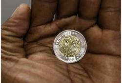 津巴布韦发行新的本国货币