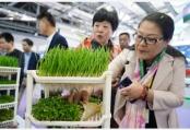 第十七屆中國國際農產品交易會在南昌開幕