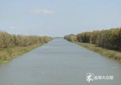 """前沿观""""两战""""系列报道⑪丨响水:守护碧水清流 提升生态颜值"""