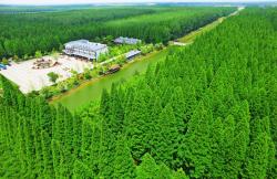 【新时代 新作为 新篇章】江苏盐城:逐绿而行,生态妙笔绘新城