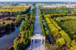 """【乡村振兴】江苏建湖:""""农村公路+""""助力乡村振兴加速度"""