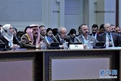 新一轮叙利亚问题阿斯塔纳会谈在哈萨克斯坦举行