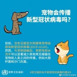 世衛組織稱無證據顯示寵物會感染
