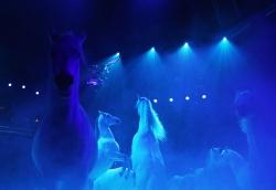 蒙特卡洛國際馬戲節開幕