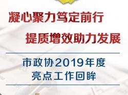 H5|best365政协2019年度亮点工作