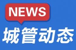 深化交流 强化担当,这一年盐都城管接轨上海的脚步更密了