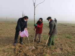 阜宁县全面提升城乡绿化建设水平